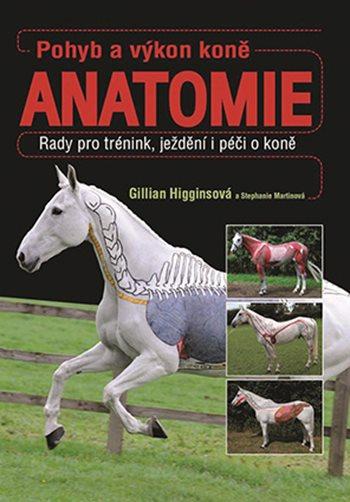 Pohyb a výkon koně – ANATOMIE