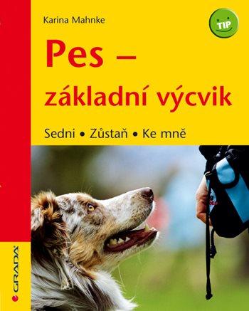 Pes - základní výcvik