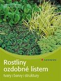 Rostliny ozdobné listem