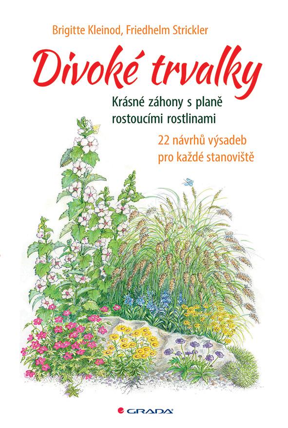 Divoké trvalky, Krásné záhony s planě rostoucími rostlinami. 22 návrhů výsadeb