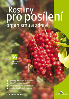 Rostliny pro posílení organismu a zdraví