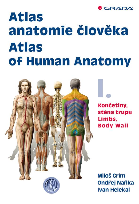 Atlas anatomie člověka I. - Atlas of Human Anatomy I., Končetiny, stěna trupu - Limbs, Body Wall
