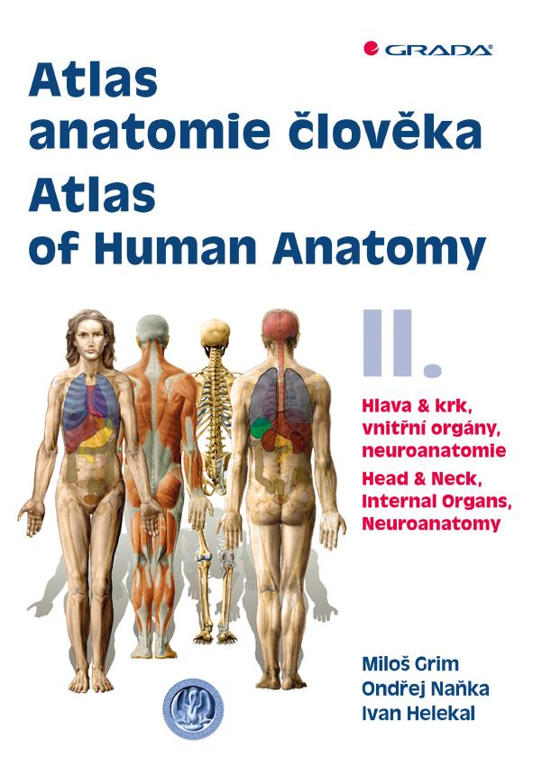 Atlas anatomie člověka II. - Atlas of Human Anatomy II., Hlava a krk, vnitřní orgány, neuroanatomie - Head and Neck, Internal Organs, Neuronatomy